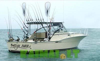 Menkių žvejyba Baltijos jūroje