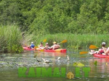 Plaukimas baidarėmis Dubysos upe