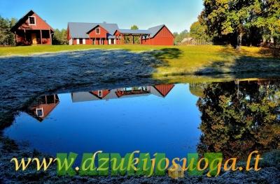 Pirties nuoma Dzūkijos uoga.Kaimo turizmas šalia Druskininkų kurorto.Ramus poilsis ir aktyvios pramogos gamtoje.